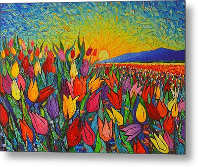 Colorful Tulips Field Sunrise - Abstract Impressionist Palette Knife Painting By Ana Maria Edulescu Metal Print