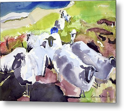 Colorful Waiting Sheep Metal Print