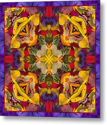 Colorific Metal Print by Bell And Todd