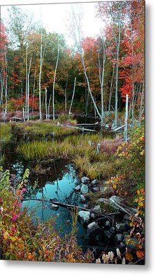 Colors By The Stream Metal Print by Joseph G Holland