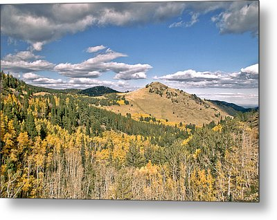 Colors In Colorado Metal Print by James Steele