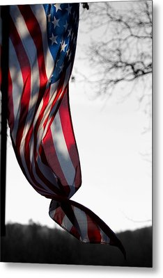 Colors In The Wind Metal Print by Lisa Johnston