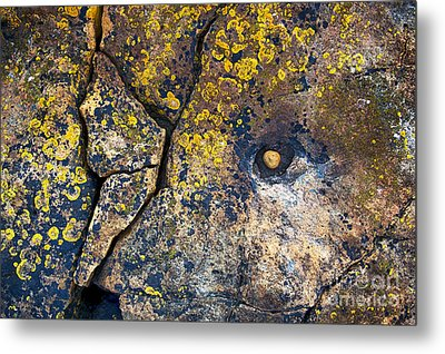 Colors Of The Coast Metal Print