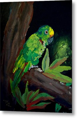 Colors Of The Parrot Metal Print by Michael Grubb