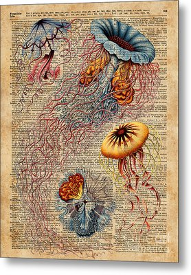 Colourful Jellyfish Marine Animals Illustration Vintage Dictionary Book Page,discomedusae Metal Print by Jacob Kuch
