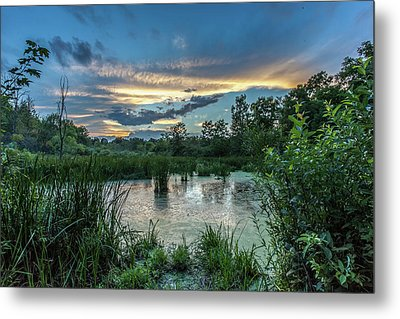 Columbia Marsh Sunset Metal Print
