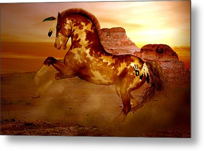 Comanche Metal Print by Valerie Anne Kelly