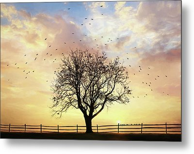 Metal Print featuring the photograph Come Fly Away by Lori Deiter