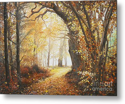 Come With Me Metal Print by Sorin Apostolescu