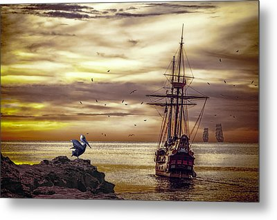 Metal Print featuring the photograph Coming Home by Diane Schuster