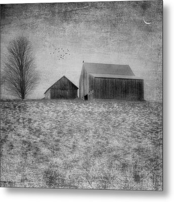 Coming Home To Roost Bw Metal Print by Bill Wakeley