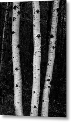 Coming Out Of Darkness Metal Print