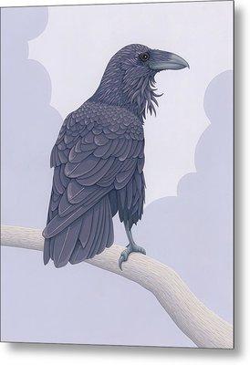 Common Raven Metal Print