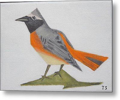 Common Redstart Metal Print by Tamara Savchenko