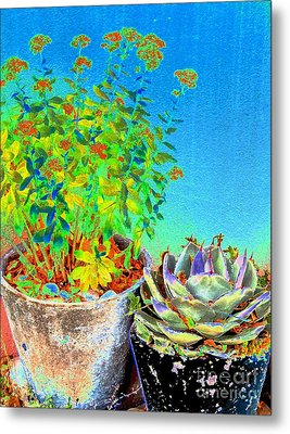 Companionship	 Metal Print by Ann Johndro-Collins