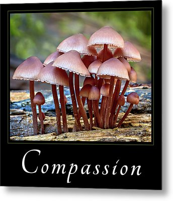 Metal Print featuring the photograph Compassion by Mary Jo Allen