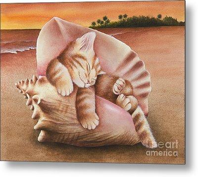 Conch Kitten Metal Print by Carolyn Steele