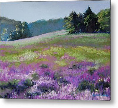 Concord Loosestrife Metal Print by Jeanne Rosier Smith