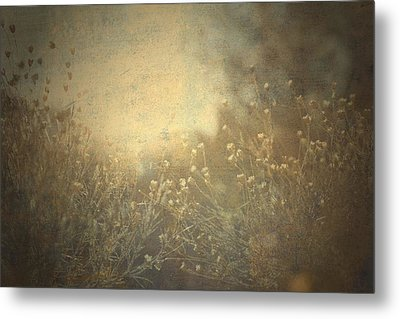 Connected  Metal Print by Mark Ross