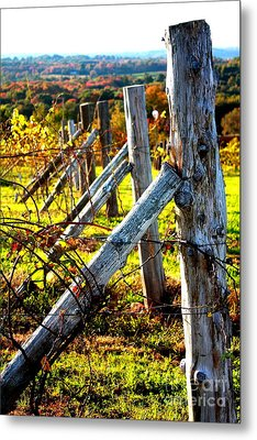 Connecticut Winery In Autumn Metal Print