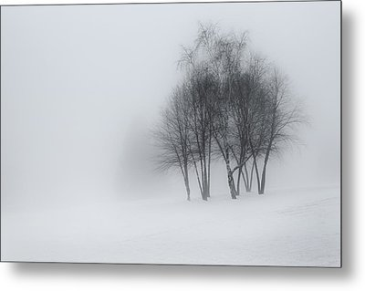 Connecticut Winter Dream Metal Print by Bill Wakeley