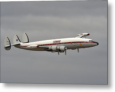 Connie Metal Print by Barry Culling