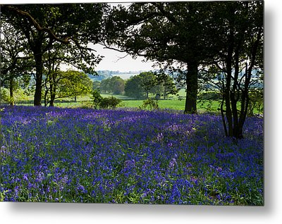 Constable Country Metal Print by Gary Eason