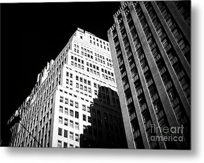 Metal Print featuring the photograph Contrast by John Rizzuto