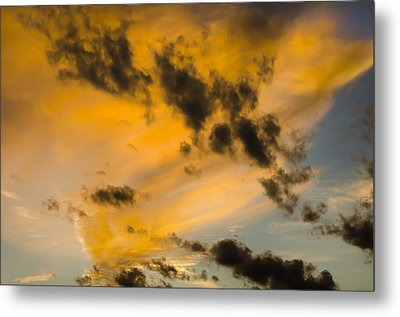 Metal Print featuring the photograph Contrasts by Wanda Krack