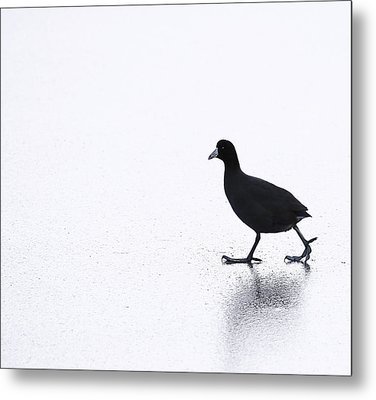 Cool Chick Metal Print by Dapixara Art