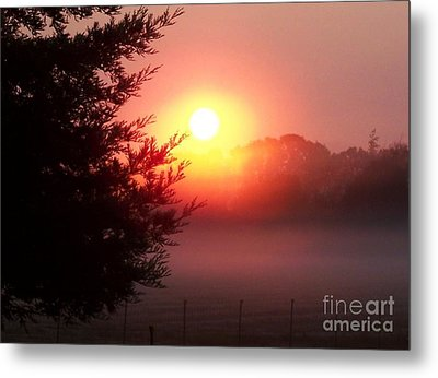 Metal Print featuring the photograph Cool Morning by Erica Hanel