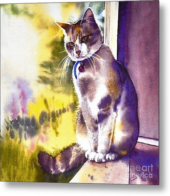 Coops The Cat Metal Print by Sandra Phryce-Jones