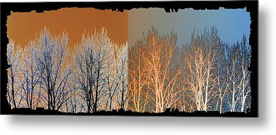 Metal Print featuring the digital art Coppertone Fusion by Will Borden