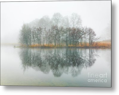 Copse Of Trees In The Mist Metal Print by Tony Higginson