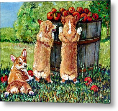 Corgi Apple Harvest Pembroke Welsh Corgi Puppies Metal Print by Lyn Cook
