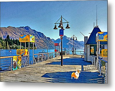 Metal Print featuring the drawing Corgi At Queenstown New Zealand by Kathy Kelly
