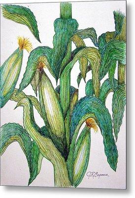 Corn And Stalk Metal Print
