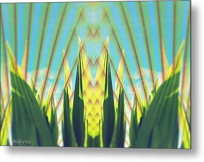 Cornfield At Sunrise Metal Print