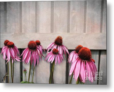 Coneflower Couples Metal Print