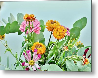 Cornflowers 20 Metal Print by Kim Bemis