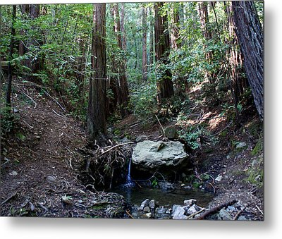Corte Madera Creek Metal Print by Ben Upham III