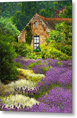 Cottage Amidst The Lavender Metal Print