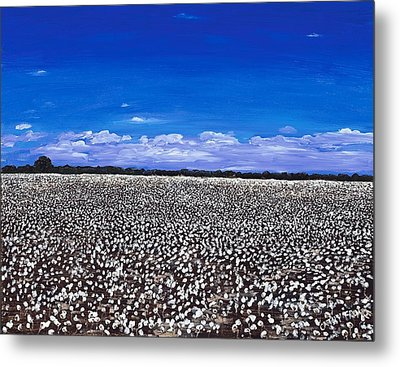 Cottonfields In Eastern Arkansas Metal Print by Cathy France
