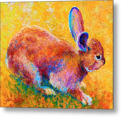 Cottontail II Metal Print by Marion Rose