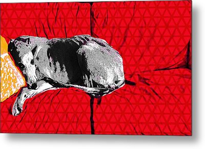 Couch Rest Metal Print