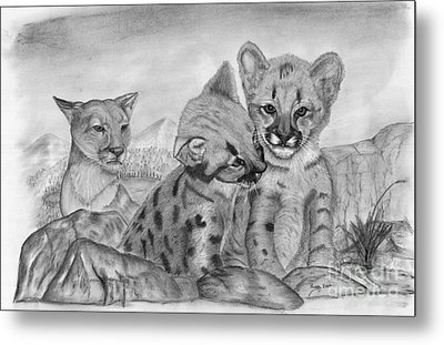 Cougar As She Watches Her Cubs Metal Print by Russ  Smith