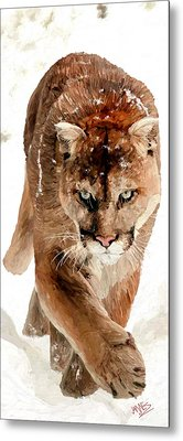 Metal Print featuring the painting Cougar In The Snow by James Shepherd