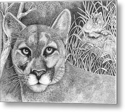 Cougar Metal Print by Lawrence Tripoli