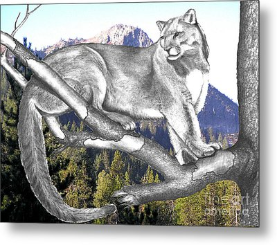Cougar Mountain Metal Print by Russ  Smith