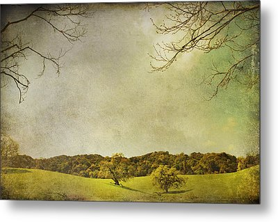 Count On Me Metal Print by Laurie Search